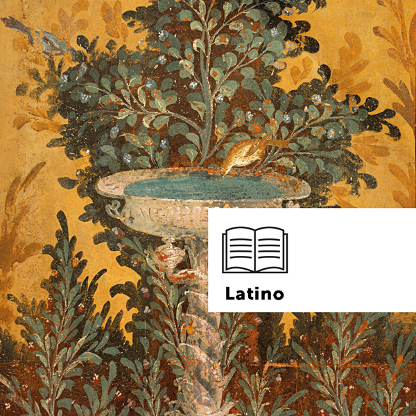 Che cos'è la certificazione linguistica del latino?