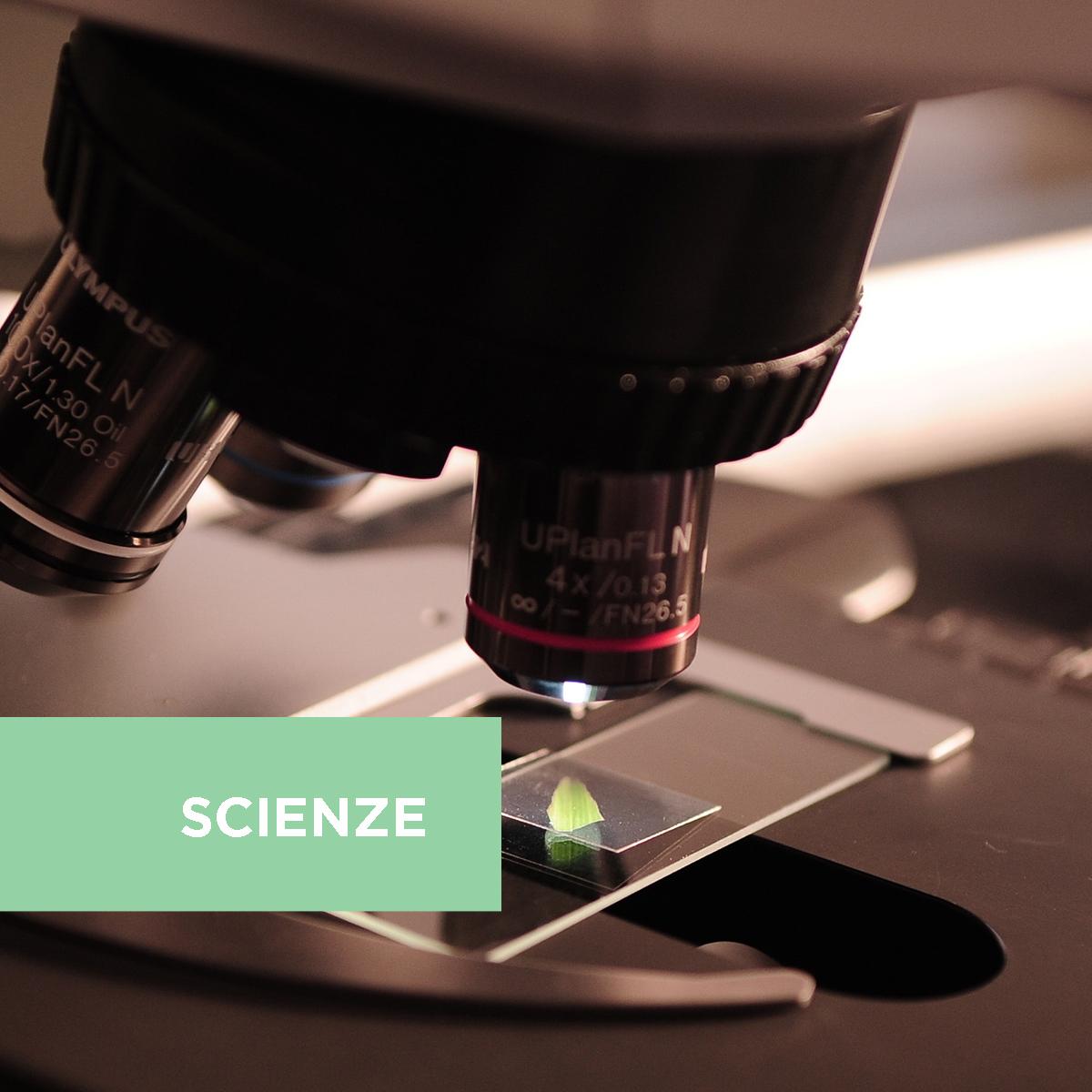 I microrganismi, questi sconosciuti: scopriamoli investigando
