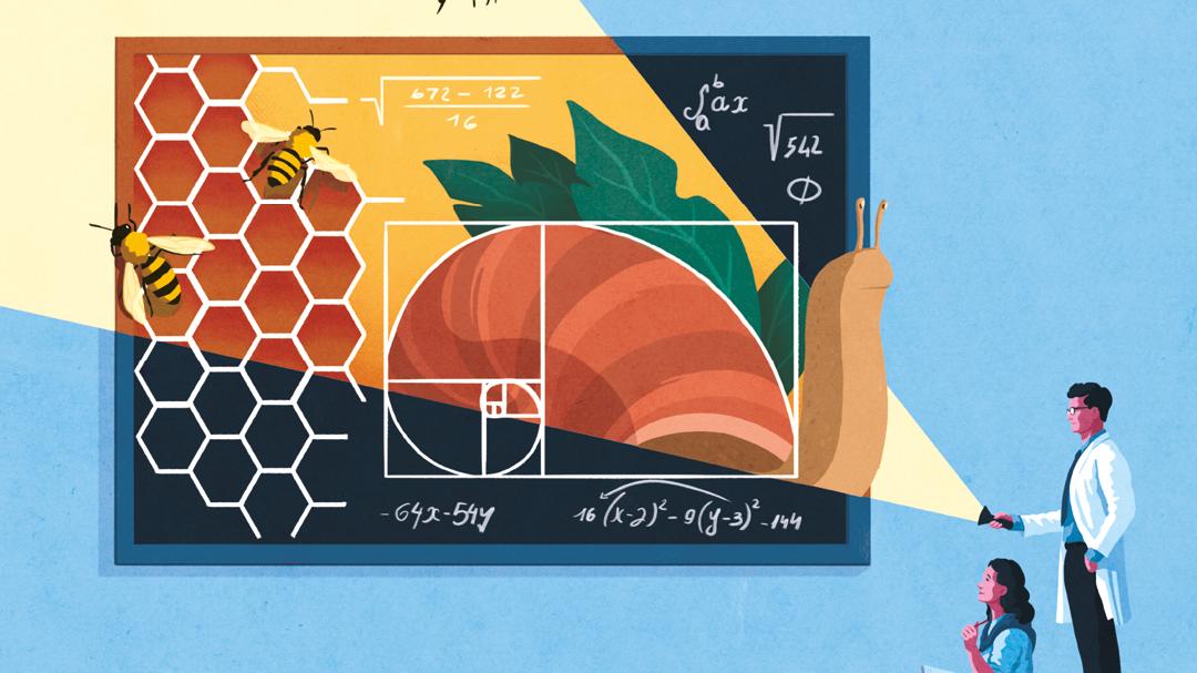 La Matematica e Le Scienze Live