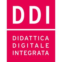 DDI - Lesson Plan   Rizzoli Education