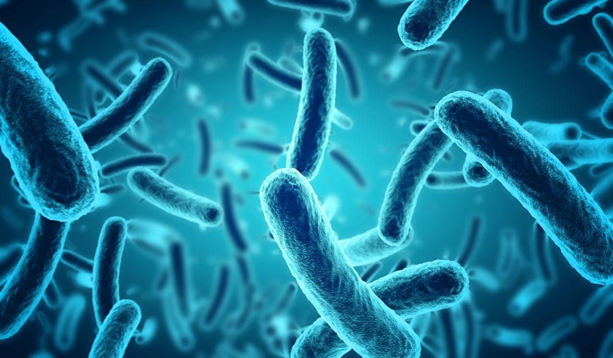 I gel igienizzanti e il microbioma